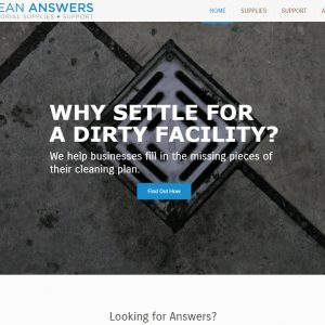 A Screenshot of Clean Answers' Homepage